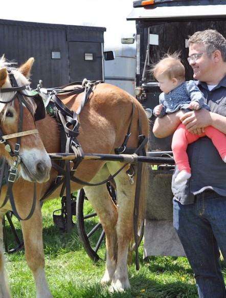 Hire The Amish365.com Editor