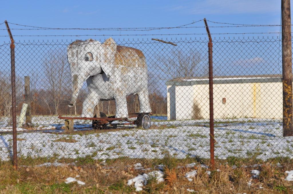 Mystery Elephant of Dillsboro, Indiana