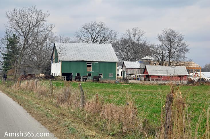 Amish365 Plus: My Awkward Amish Encounter
