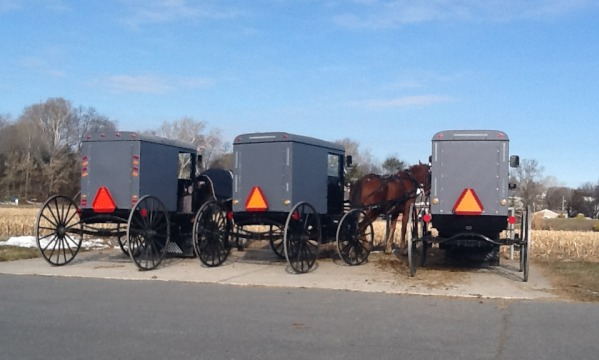 Amish in the News:  Amazing Lancaster County Casseroles, Millie Otto,  Country Doctor, and More!