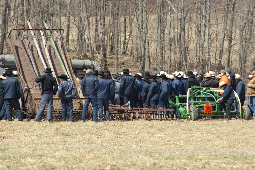 Amish men gather to bid at  the auction