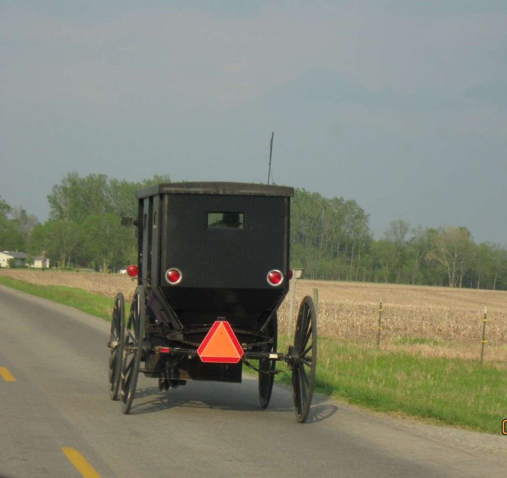 Amish in the News:  Wisconsin Professor,  Police and the Amish, Amish on the Beach, Buggies on the Roof, and Simply Amish