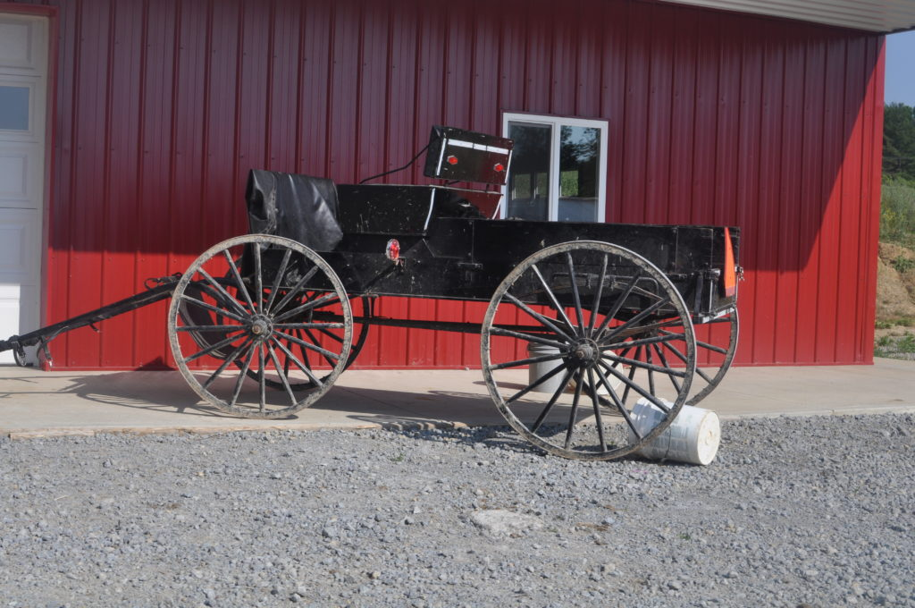 Open buggies are common among the  Amish of Highland County