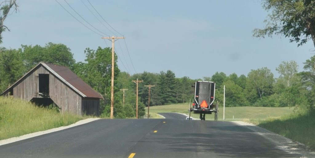 A covered buggy in southern Highland County