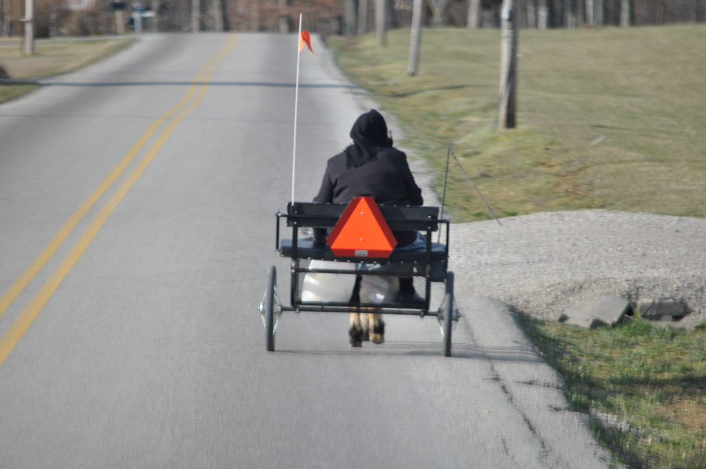An Amish woman clatters down the road in her horse-deawn cart in Adams County, Ohio....