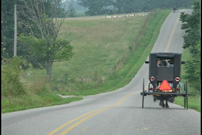 A buggy glides down one of the hilly roads of Adams County.
