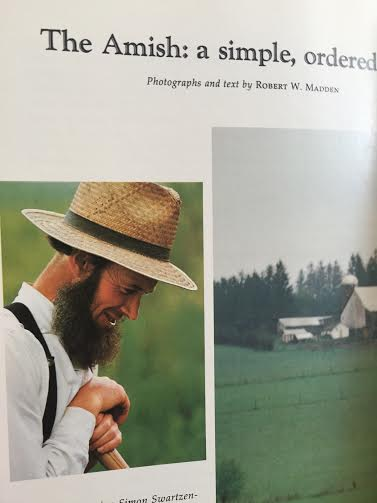 amish community essay Family is the basic social unit in the amish community, but the supreme social unit is the church, which performs main social and religious functions in the community.