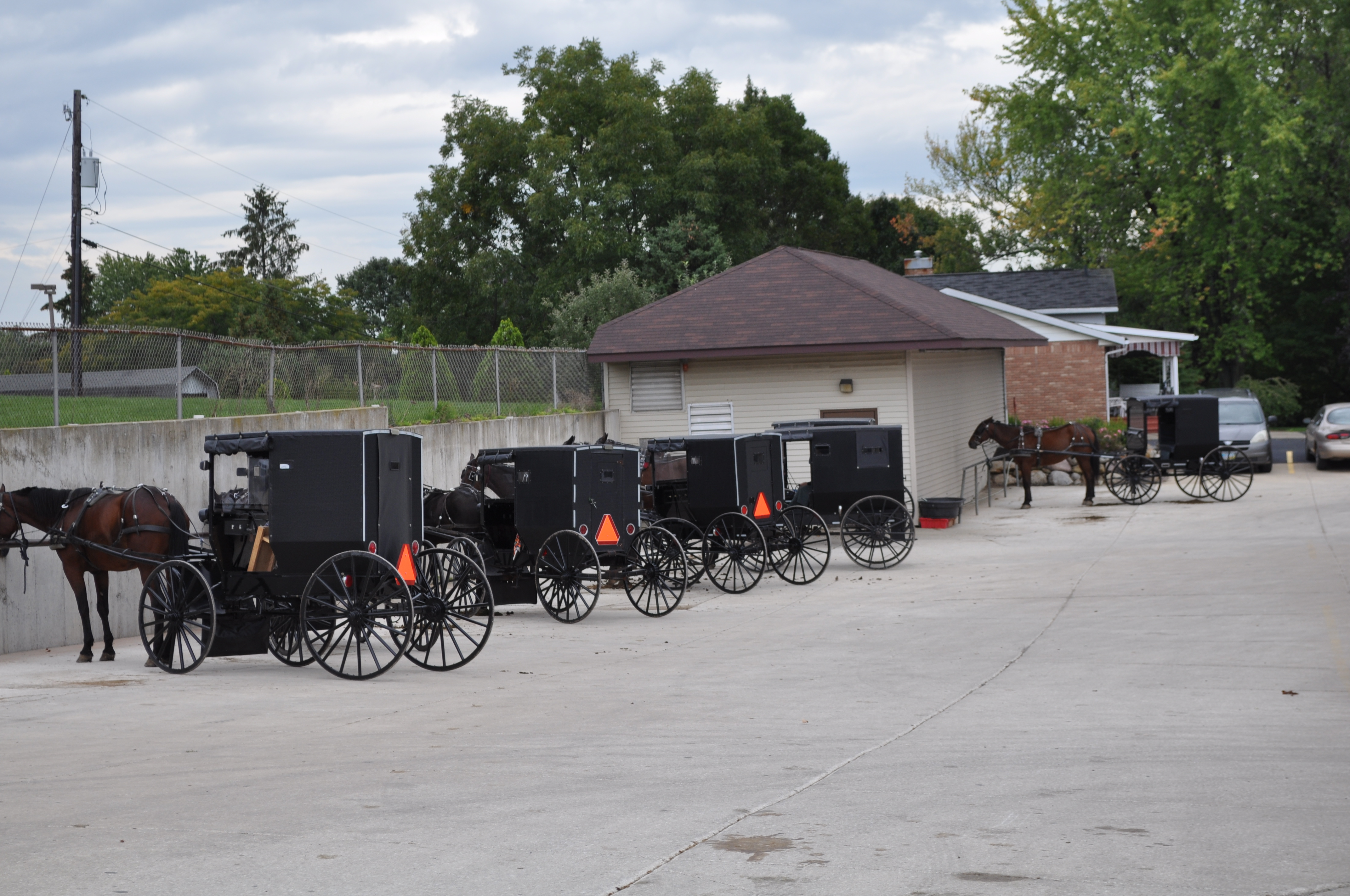 Buggies outside of a business in berlin ohio