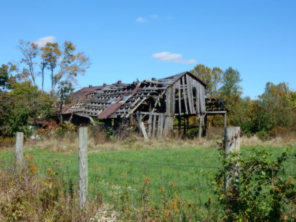 This barn has clearly seen better days, but framed against a crisp October sky it still maintains a certain beauty....