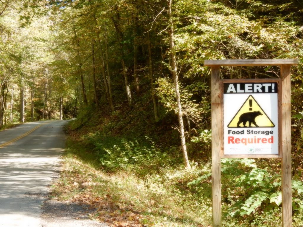 A sign on a rural back-road reminds you that you're in black bear country