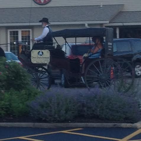 Der Dutchman's Amish Stuffing