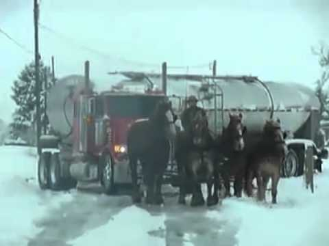 Still photo from viral video showing Amish buggy pulling a tanker out of the snow