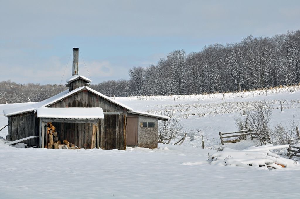 An Amish shack in the Conewango Valle of New York just like the one Gloria's family has