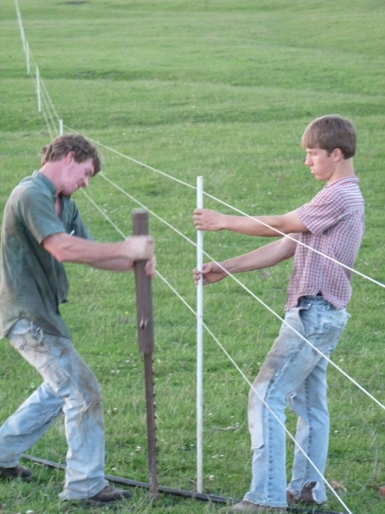 Rosanna's brothers, Marvin and Steven, fixing fencing.