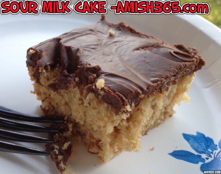 Amish Sour Milk Cake, a moist, delicious peanut butter-chocolate cake