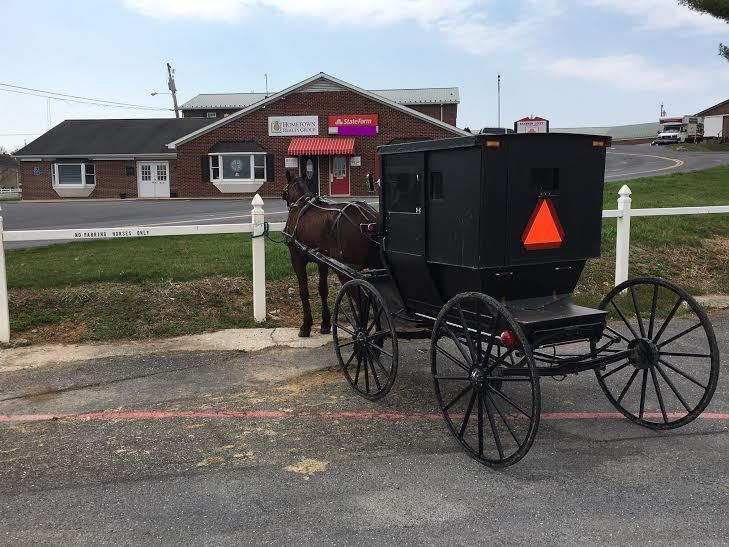 Old Order Mennonite buggy in Dayton, Virginia