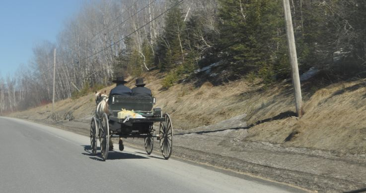 Amish Buddy On Road in Maine