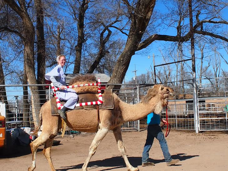 "Rosanna rides a camel at a ""weekend retreat"""