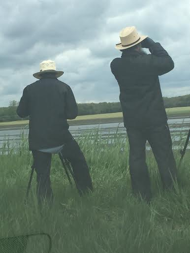 Amish birders use their scopes and binoculars outside of Toledo
