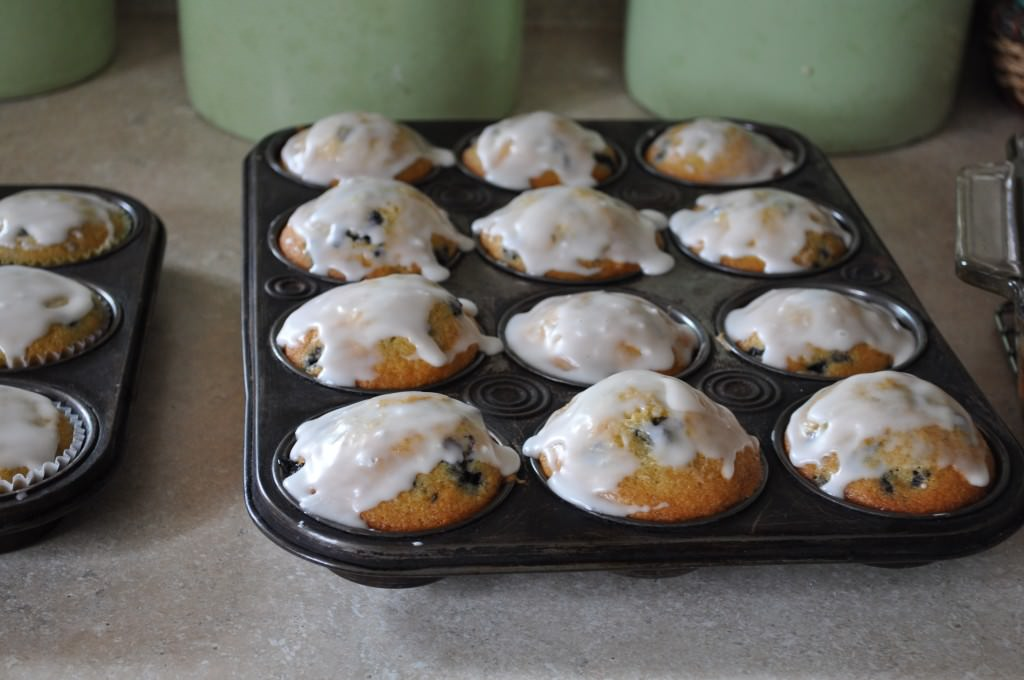 Buttermilk Frosted Blueberry Muffins in a tray