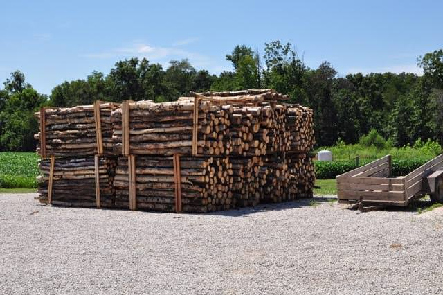 A load of logs is delivered which will eventually be transformed into furniture.