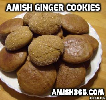 Old-Fashioned Amish Ginger Cookies