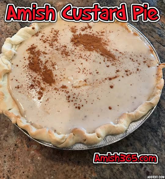 Amish Custard Pie, my 3-year-old sprinkled on the cinnamon hence the uneven coverage. Oh well. Good tasting pie!