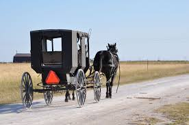 Can I paint this photo?  A scene in the Amish settlement outside Beeville...