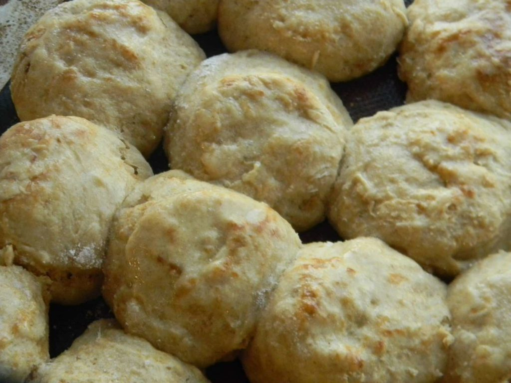 Homemade  Sourdough Biscuits from Home Joys
