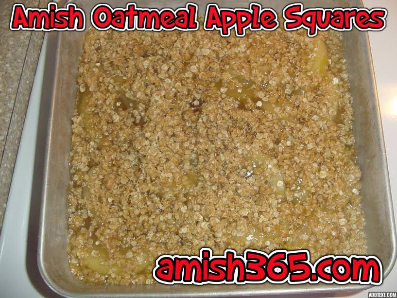 Amish Fruit-Filled Oatmeal Squares