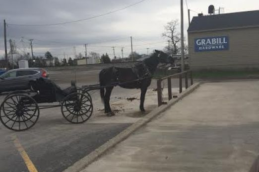"Amish in the News: Amish and Grabill, new ""Amish store"",  Turtle, and Millie's ""Popover Pizza"""