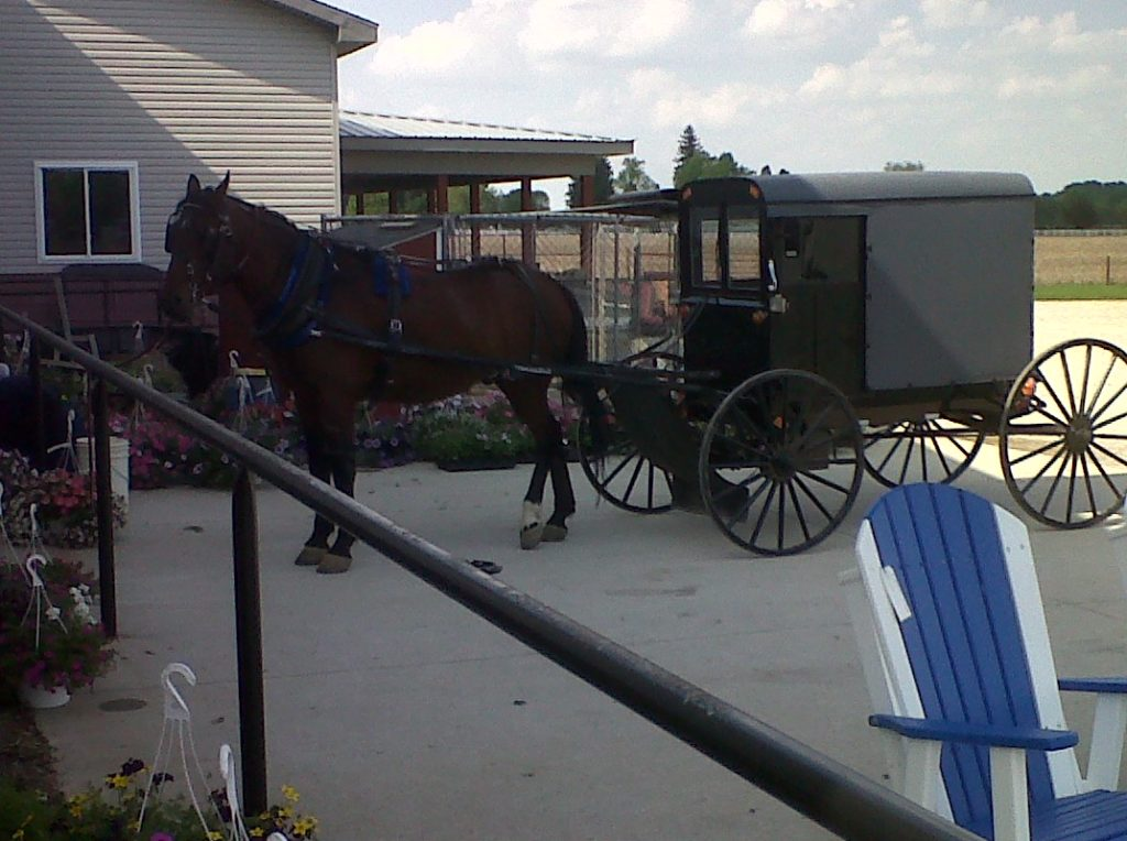 "Amish in the News:  Amish Teen Tragedy, Forging Friendships,  Millie's ""Tote Cake?"" and more…"