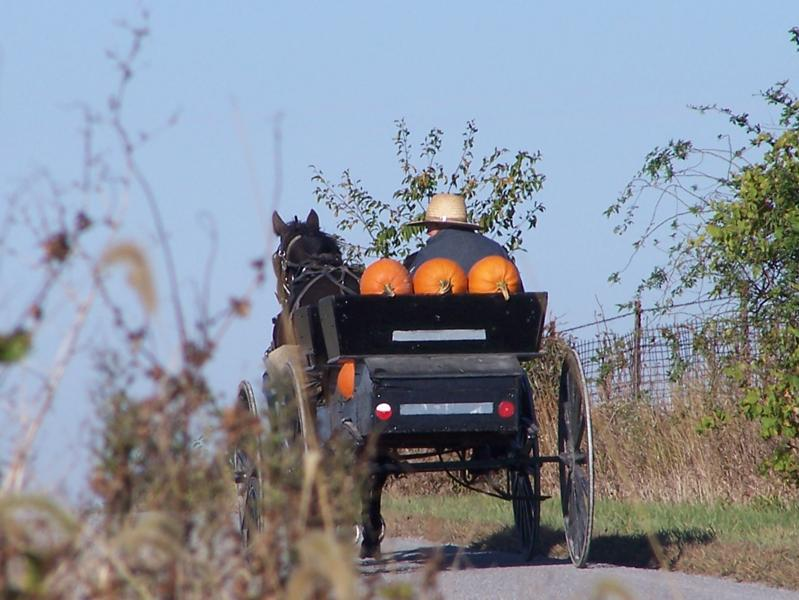 8 Amish Pumpkin Recipes