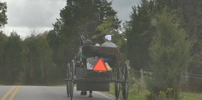 Amish In the News:  Amish DUI, Pennsylvania Dutch,  Hutterites, Amish Funny Cake, and More!