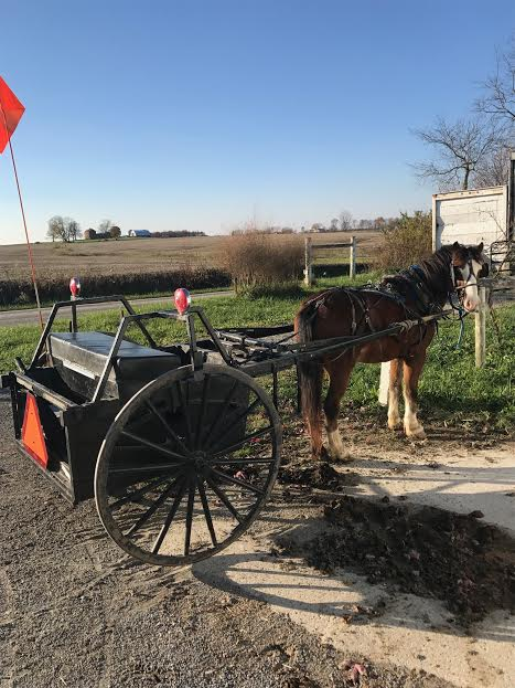 "Visit to An Amish ""Bent n Dent"""