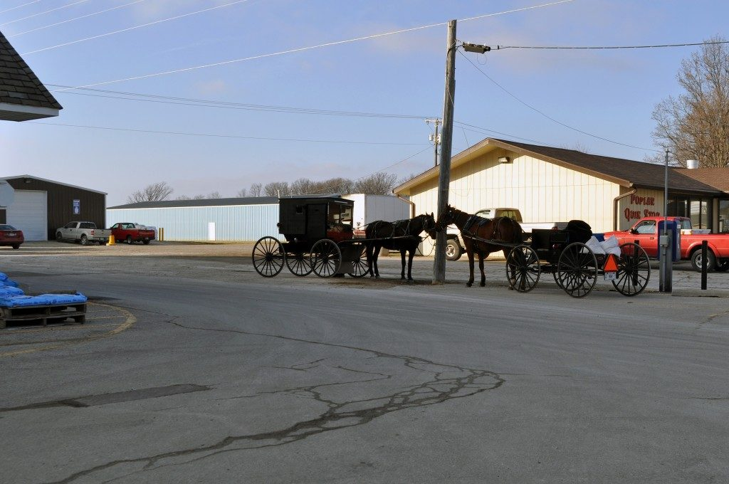 Amish in the News:  Pennsylvania Dutch Potato Stuffing, Amish on the Court,  Amish Bread, and Fountain of Youth…
