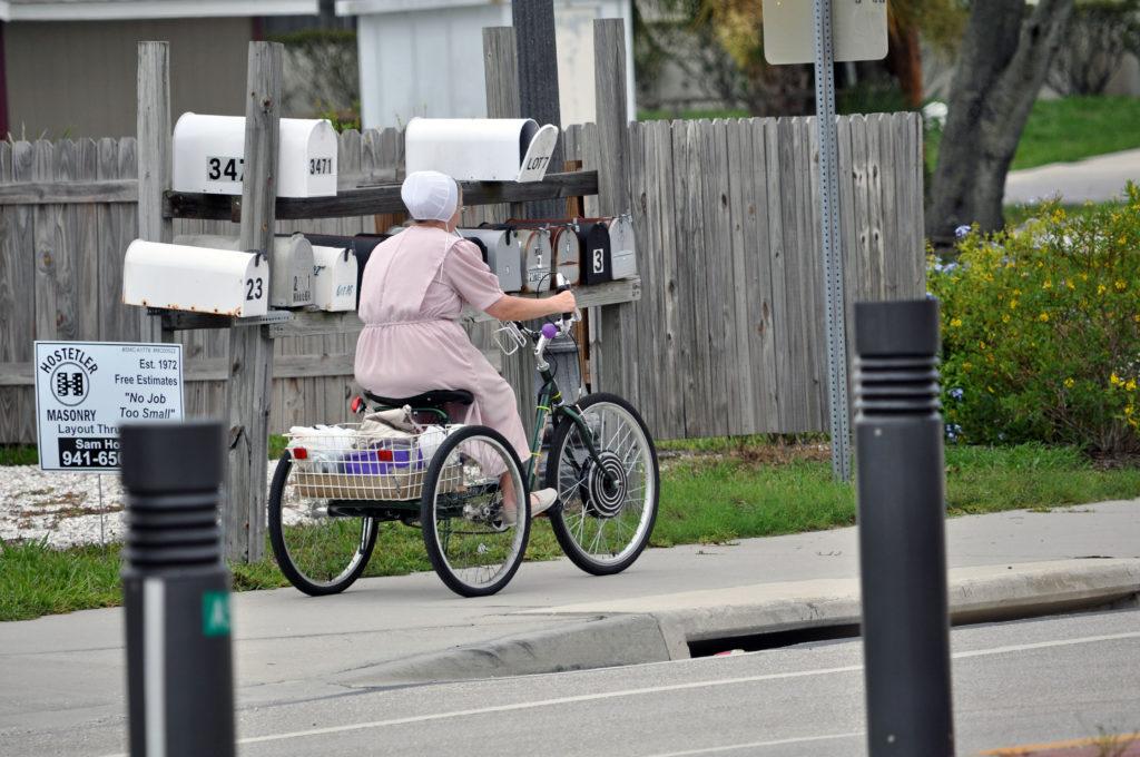 Amish in the News:  Leaving Larue, Amish Altruism, Sarasota, Ginger, and Amish Million Dollar Fudge