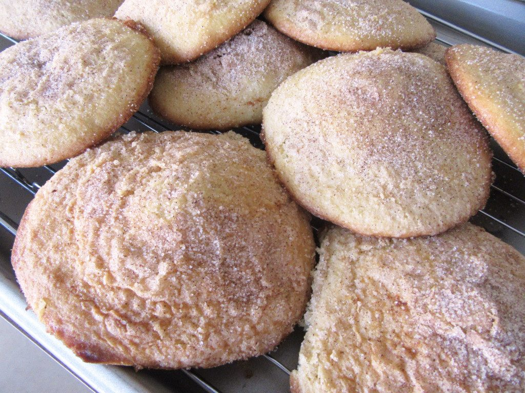 Weekly Blogroll:  Amish Church Cookies,  Amish Coffee Cake, Amish Kitchens, Zucchini Pizza Boats, and More!