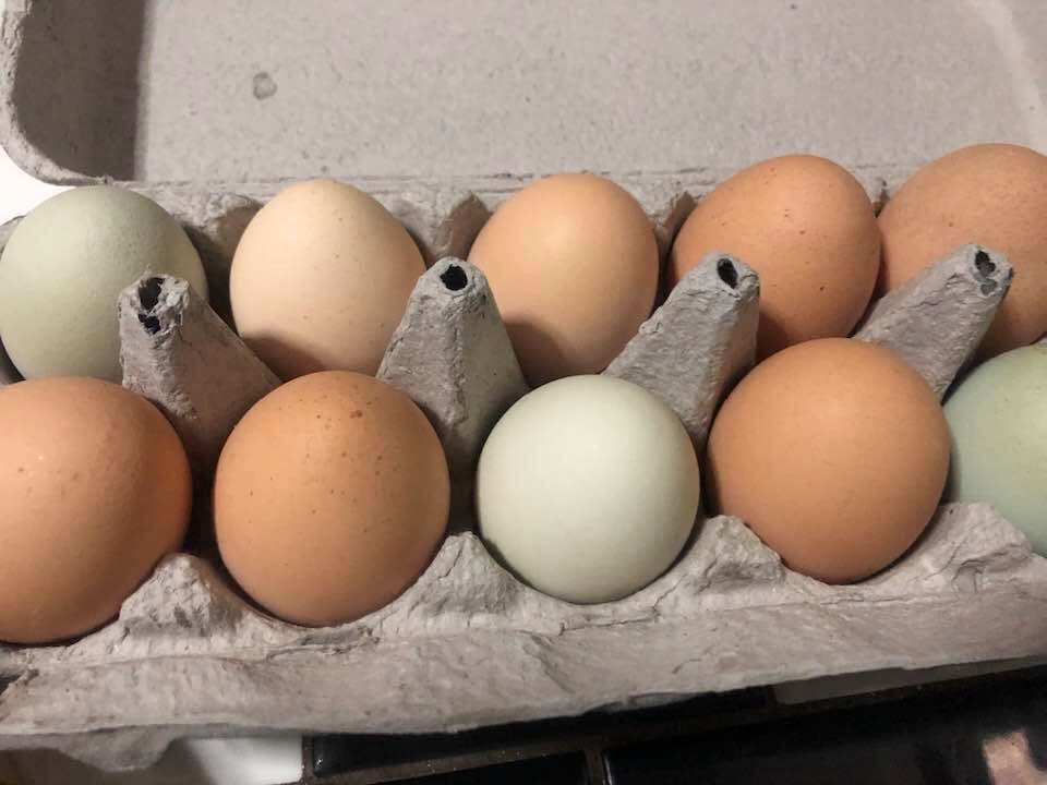 Amish Egg-In-Nest